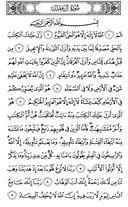 Página-50