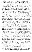 Página-295